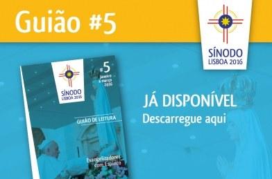 siniodo guião5